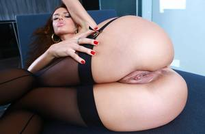 Ass And Pussy Pornstar - franceska jaimes, pornstar, brunette, ass, pussy, big ass, sexy, ...