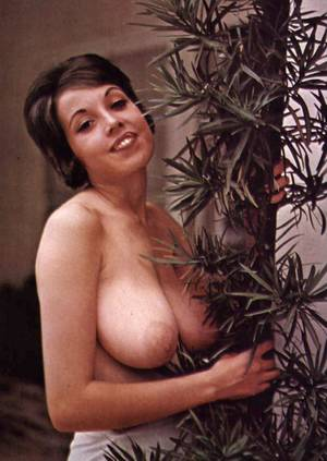 big tit vintage nudist tumblr - Julie Williams 002