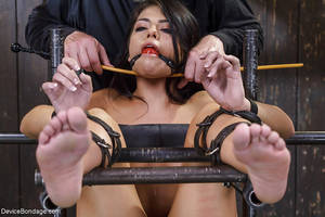 Forced Bondage And Dildo Porn - ... Brunette babe Adriana Chechik orgasms while undergoing forced  masturbation ...