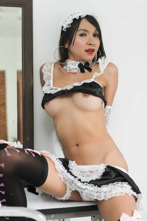 chinese japanese shemale maid sex - The Mischievous Maid